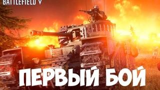 Королевская битва Огненный шторм в Battlefield 5