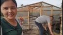 Сажаем картошку, свеклу у родителей Достроили теплицу Влог про жизнь в деревне