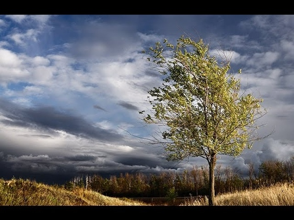 То не ветер ветку клонит (Лучинушка) - Поёт Юлия Боголепова