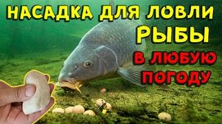 Насадка для рыбалки своими руками в любую погоду