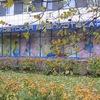 Центральная Детская Библиотека г. Кириши