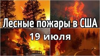 Лесные пожары в США 19 июля 2021 Сильный дым охватили западные штаты США | Катаклизмы, боль земли