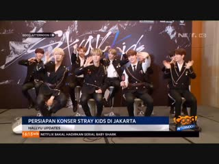 190126 stray kids @ net tv good afternoon show