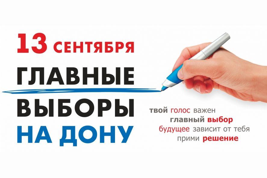 Прозрачность голосования в Ростовской области обеспечат более 2,5 тысячи общественных наблюдателей