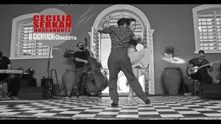 Buscandote - Cecilia & Serkan - El Cachivache - Tango Live Show & exhibition