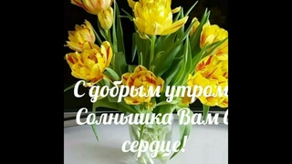 С добрым весенним утром🤩🌺