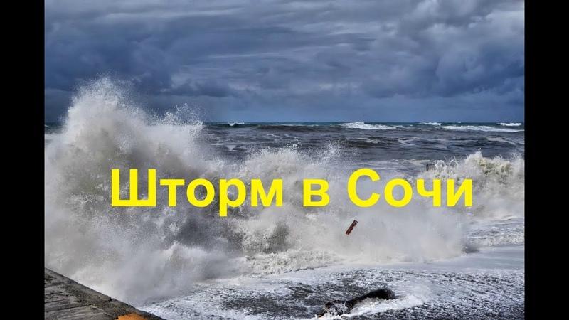 ✔️Мой ДРУГ в ШТОРМ принимал морские ванны Морской волк Сочи шторм 2020 Лазаревское зимой 2020