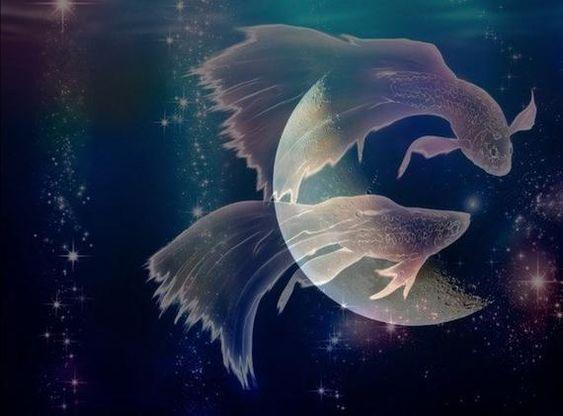 Новолуние в Феврале 2020: Мощный удачный период Новолуние 23 февраля 2020 пройдет в 18:31 в знаке Рыбы и будет наполнено захватывающими энергиями, энергиями сексуальности и спорта. Февральское
