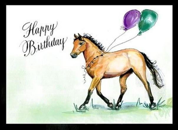 стар, поздравления для конника на день рождения наличии