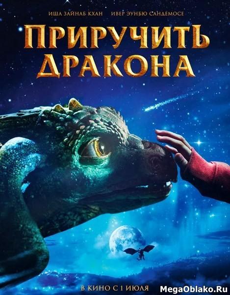 Приручить дракона / Dragevokterens jul (2020/WEB-DL/WEB-DLRip)