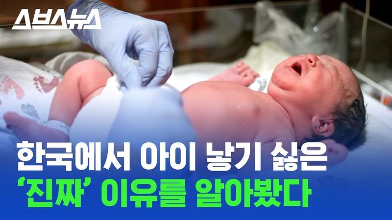 '인간의 본능' 때문에 한국에서 아이를 낳지 않는다 수도권 집중과 저출생 문제의 관계 스브스뉴스