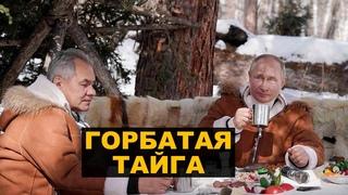 Неуклюжий пиар Путина в тайге или что пошло не так