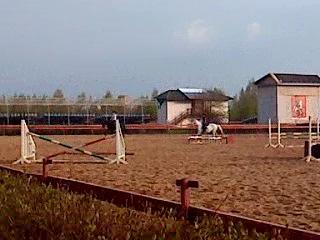 Мои первые прыжки) я на белой лошади по кличке Багира)