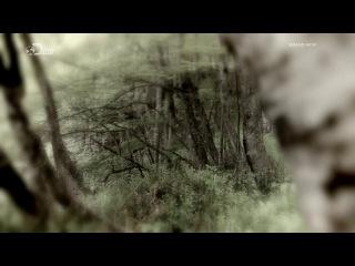 Беар Гриллс По Стопам Выживших 720p Escape From Hell 1x05 Горы