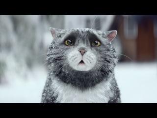 Мультик Короткометражный рождественский фильм про кота (с переводом)