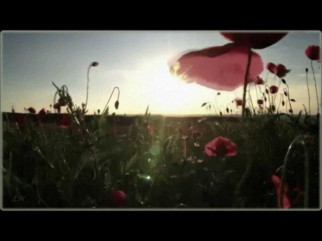 Ernesto Cortazar Music of the soul Уходящему лету