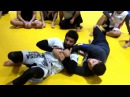 Rolling kimura attack and variations with Professor Leo D'avila