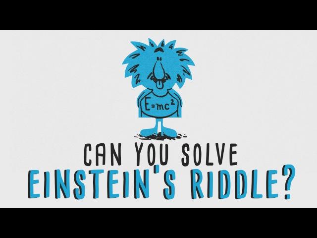 Can you solve Einstein's Riddle Dan Van der Vieren