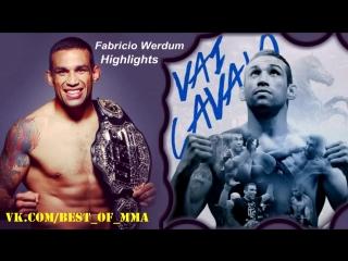 Fabricio werdum king of the heavyweights