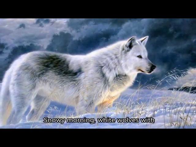 Nastia Poleva - White wolves/Настя Полева - Белые волки