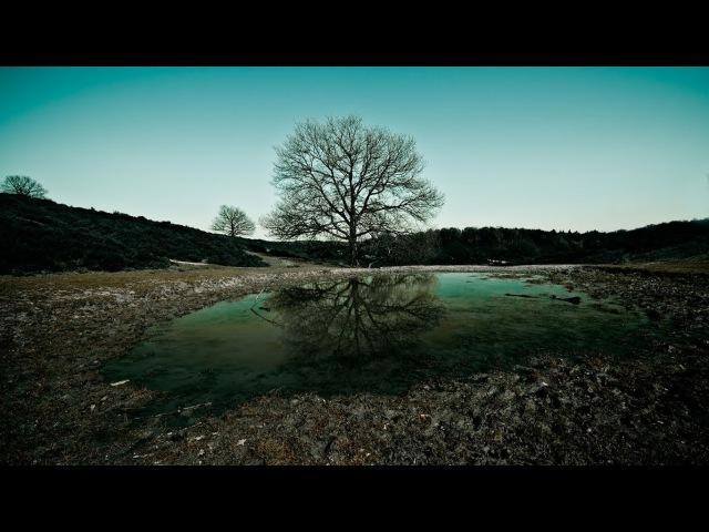 Pentak Stream. Gothic II Night of the Raven Возвращение 2.0 (The Returning 2.0) Часть 33