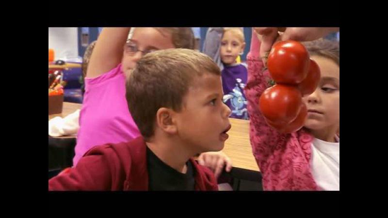 Potato or Tomato Jamie Oliver's Food Revolution Promo Clip On Air With Ryan Seacrest