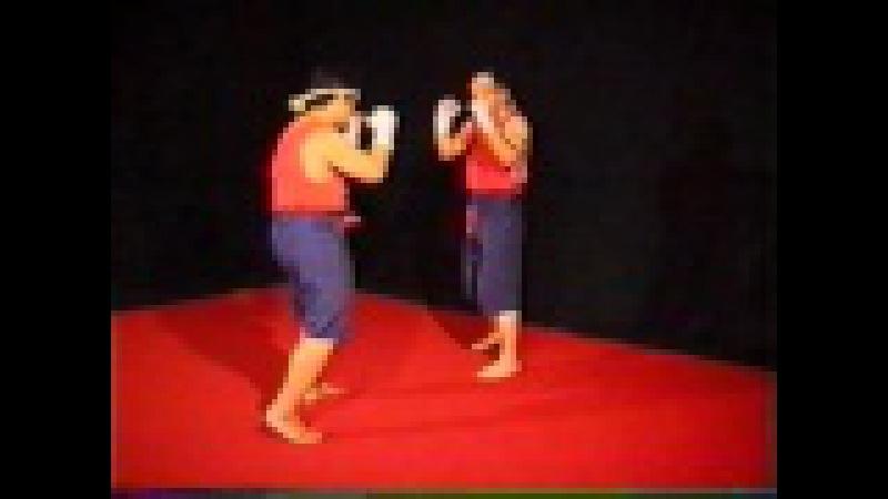 Muay Thai I A M T F trainings program C torrents ru