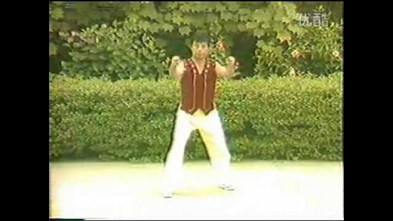 San Zhan 三戰 Tiger Boxing Huzun Quan 虎尊拳