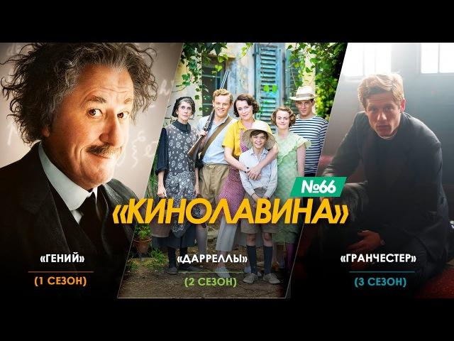 66 Сериалы Гений Дарреллы 2 сезон Гранчестер 3 сезон русские трейлеры к