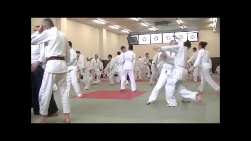 Yukimitsu Kobayashi Shihan - Romania 2016 - part 3