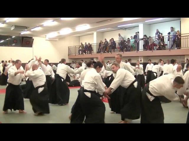 Yukimitsu Kobayashi Shihan Romania 2016 part 4