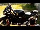 Мотоцикл Falcon Speedfire CTM250-4.Честный обзор.