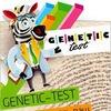 ДЕРМАТОГЛИФИКА- генетическое исследование Успеха