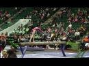 Ksenia Klimenko Beam 2017 WOGA Classic