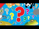 What Is It? Song Animals English Pattern Practice for ESL ESL for Kids Fun Kids English