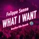 DJ Pechkin & Felippe Senne - 1 2 3 sex what (DJ Lomoff mash up)