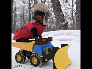 Crusoe Drives Snow Plow During Blizzard!