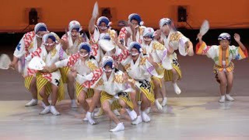 舞台踊り 南越детишки жгут谷商店会「勢」連 第33回南越谷阿波踊り 2017 8 19