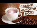 САМЫЙ ДОРОГОЙ КОФЕ В МИРЕ / КОФЕ ЛЮВАК (KOPI LUWAK)