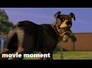 Лесная братва (2006) - Играть (6/11) | movie moment