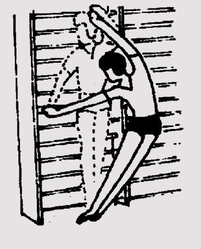 Упражнения стенка картинки