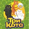 Tri-Kota Voronezh