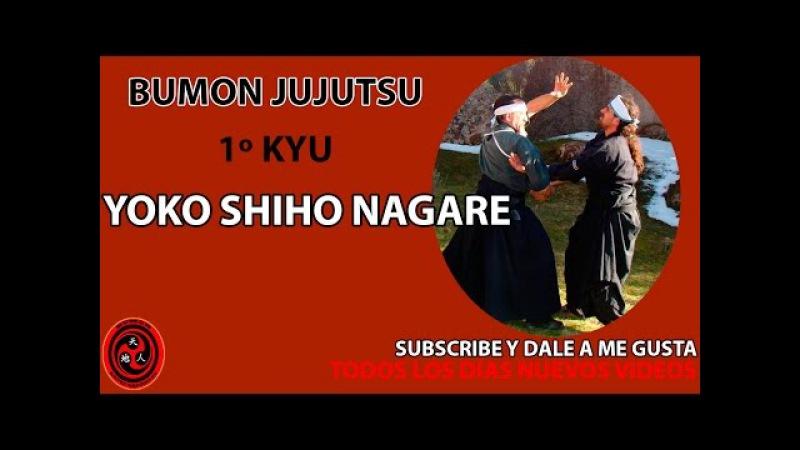 1 kyu jujutsu yoko shiho nagare jiujitsu ninpo taijutsu bumon