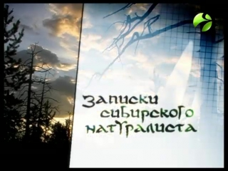 Записки сибирского натуралиста (среда в 1830)