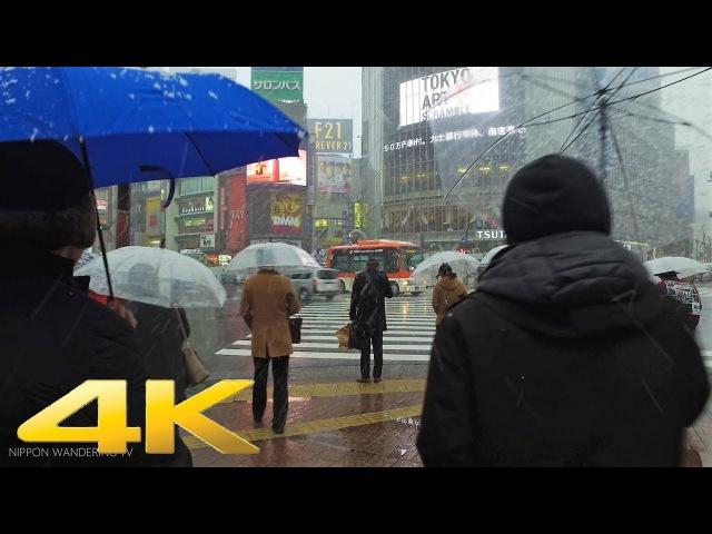 東京・渋谷4年ぶりの大雪 2018年1月22日 Snow in Shibuya