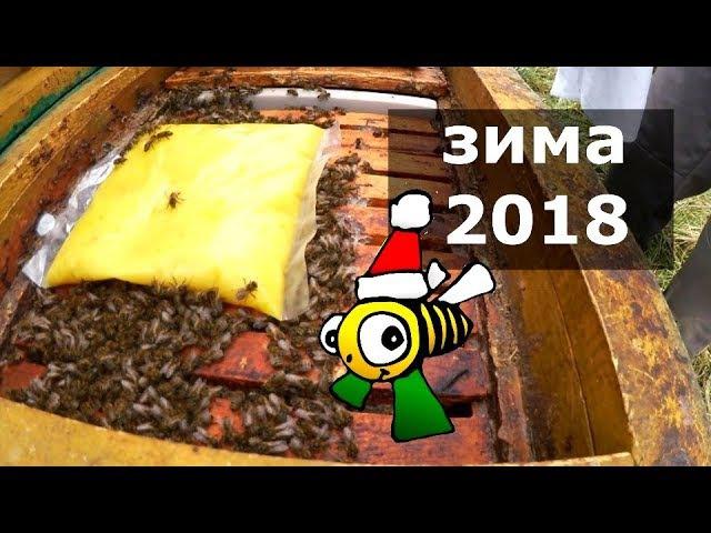 Бджільництво Зимова двіжуха Огляд екскурсія