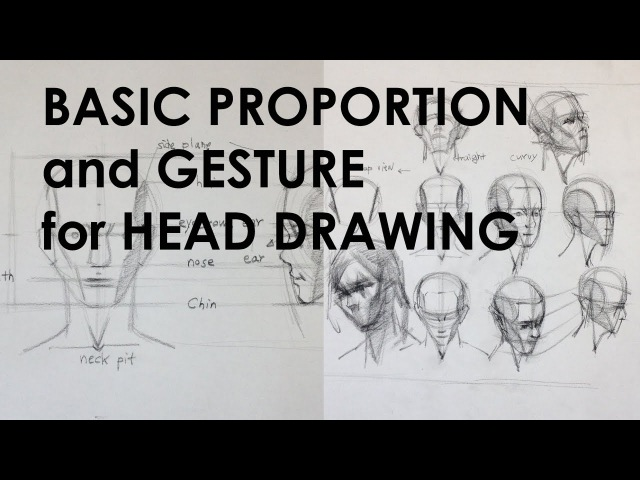 Basic Proportion and Gesture for Head Drawing