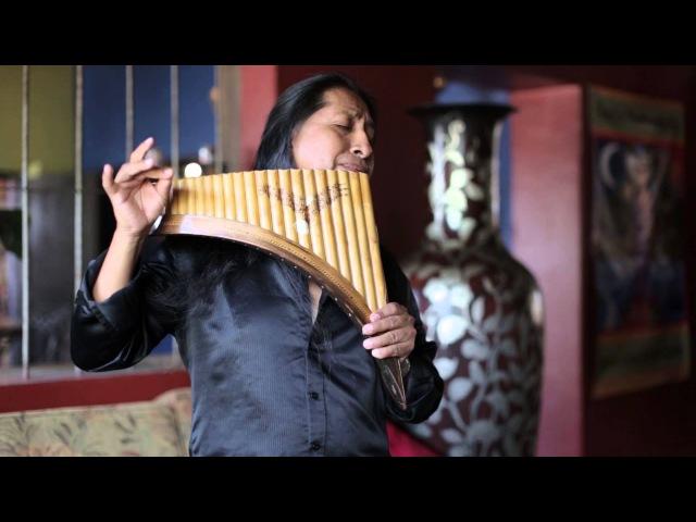 Hallelujah on Panflute Aleluya by Edgar Muenala Official Music Video
