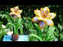 HOW TO MAKE 3D ORIGAMI DAFFODIL FLOWER cómo hacer flor de narciso de papel