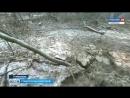 Ставропольчане готовы охранять деревья круглосуточно. Автор Никита Шишков